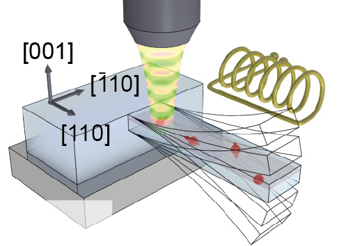 The oscillating resonator influences the electron spin in the nitrogen-vacancy centers (red arrows). Their spin can be efficiently read out by fluorescence microscopy.