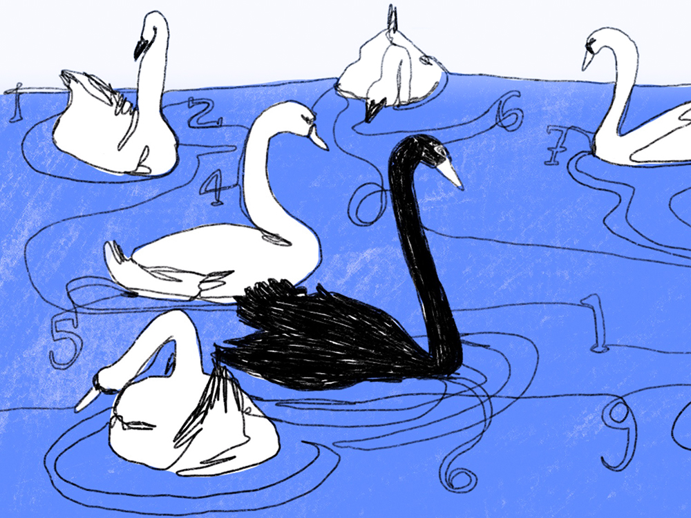 Illustration of a pond with swans, one of them is black.