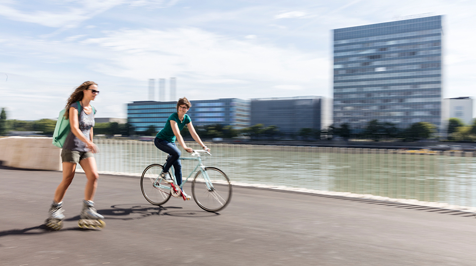 Cycle and skate along the Rhine river board