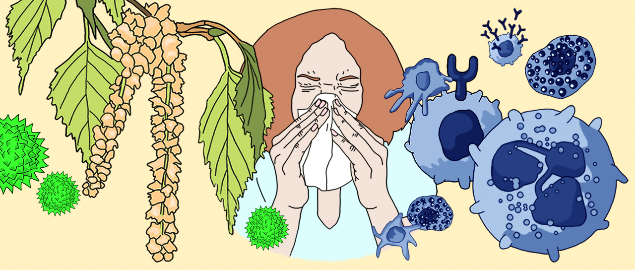 Allergies of all kinds are becoming ever more common. A new online course from the University of Basel offers insights into the topic (Illustration: University of Basel, New Media Center).
