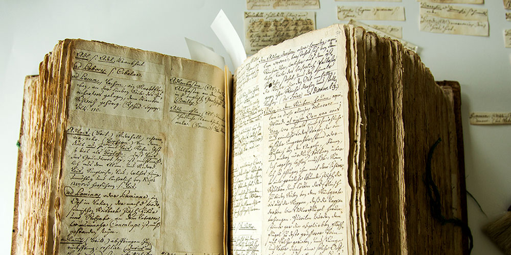 "The ""German Glossary"" by Johann Jakob Spreng consists of nearly 100,000 handwritten notes and is stored at the University Library. Basel researchers will now make the largest German dictionary of the 18th century accessible for the first time.  (Photo: University of Basel, Florian Moritz)"