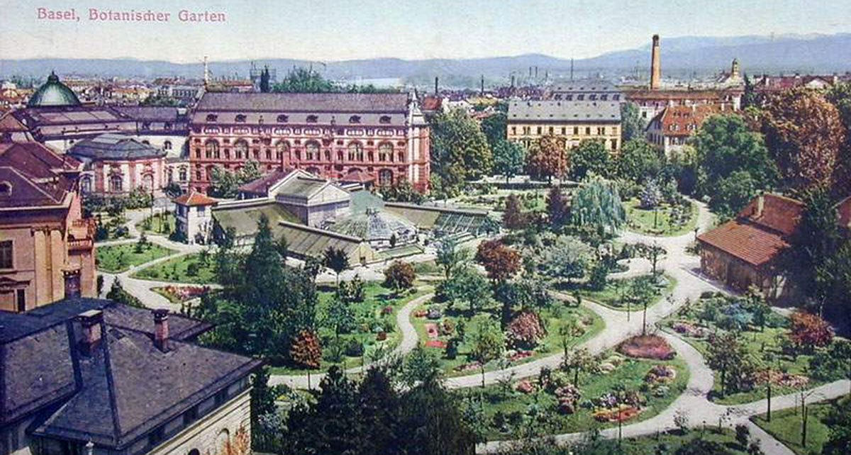 The botanical garden in a color postcard from 1905.