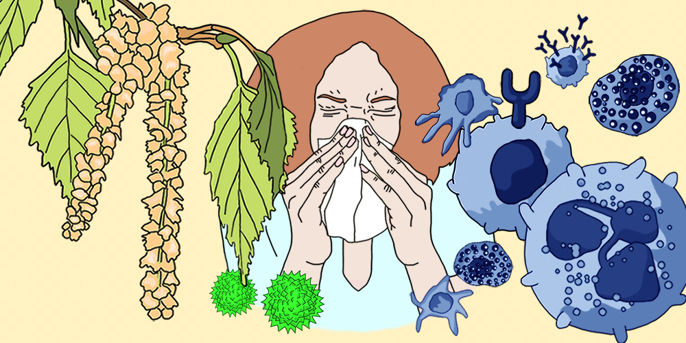 When the immune system fights back: online course on allergies