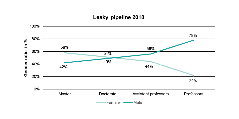 Leaky pipeline explains the phenomenon that the share of women drop in the career path to professorship